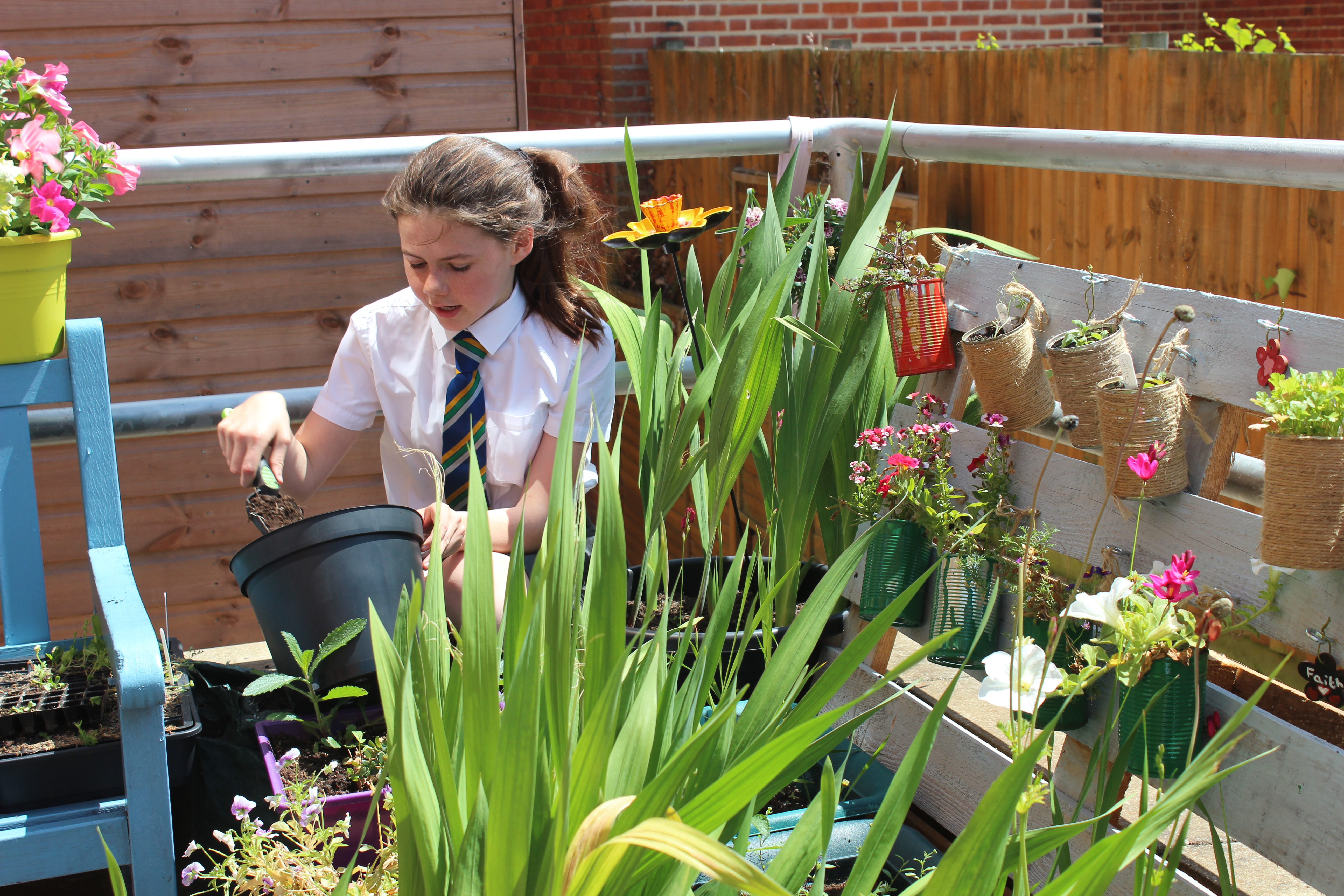 CHS Pupil Shortlisted for RHS School Gardener of the Year Award - Kizzy